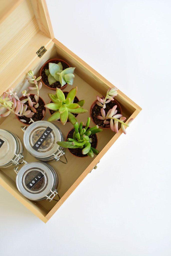 Um kit de jardinagem é um presentes criativo